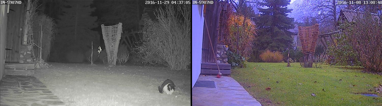 Infrarotkamera vs. normale Kamera