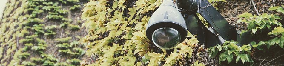 Überwachungskamera mit Ton